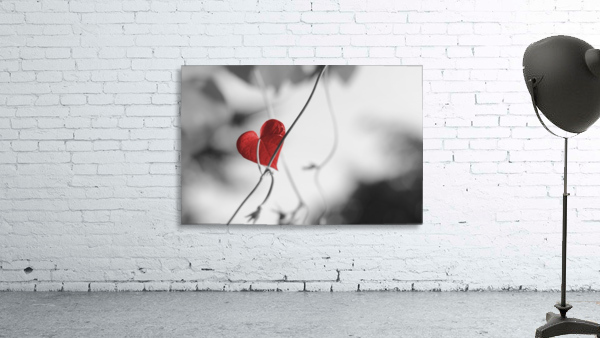 Red heart shaped leaf