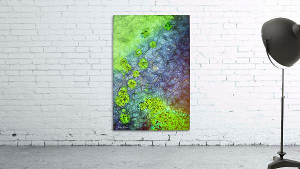 Green Paint Drops_120828_17039 HXSYV