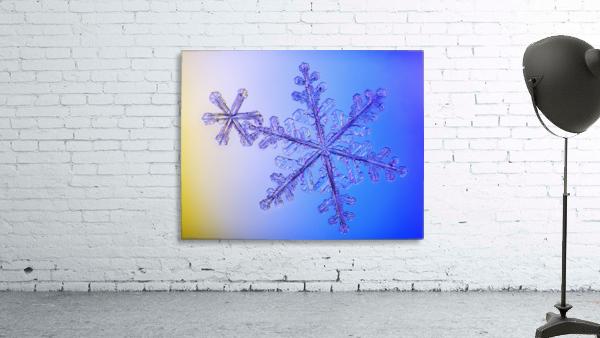 Photomicroscopic close up of two snowflake crystals, Alaska
