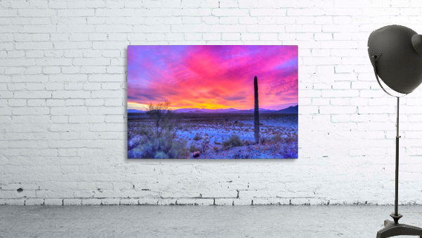 Sonoran_sunset