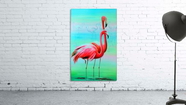 Фламинго на рассвете