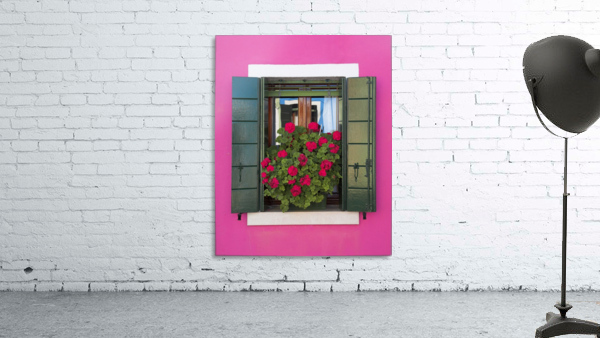 Pink Wall And Green Shutters, Burano, Italy
