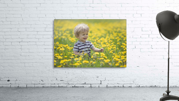 18-Month-Old Boy In Dandelion Field; Thunder Bay, Ontario, Canada