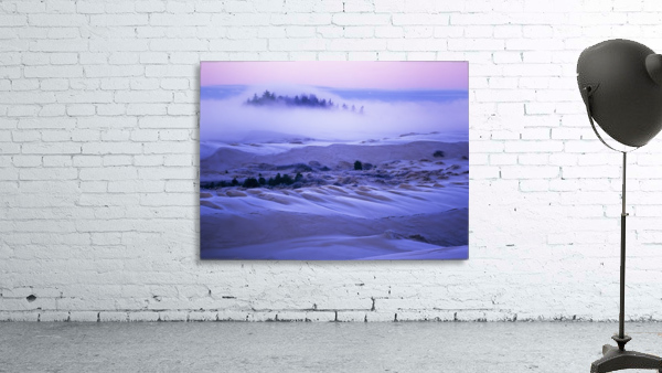 Fog over the sand dunes at dawn after a heavy frost; Lakeside, Oregon, United States of America