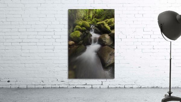 Ruckel Creek; Oregon, United States of America
