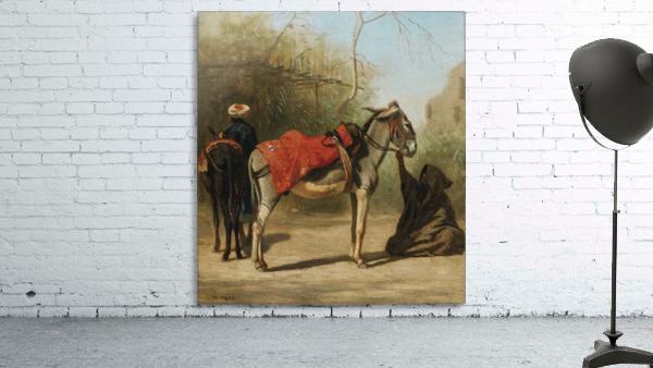 Donkeys in Cairo
