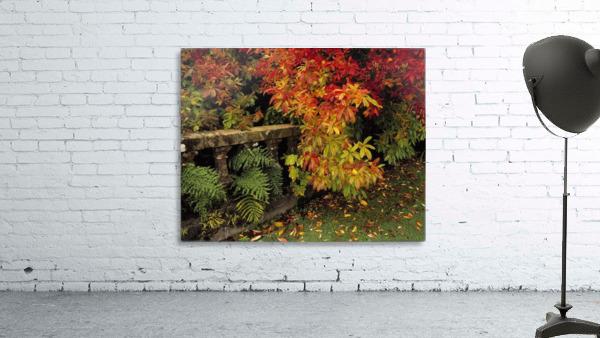 Balustrades & Autumn Colours, Castlewellan, Co Down, Ireland