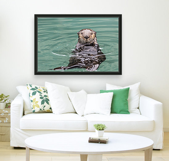 Close-up of a Sea Otter (Enhydra lutris) floating on it's back, looking towards the camera, South-central Alaska; Seward, Alaska, United States of America  Art
