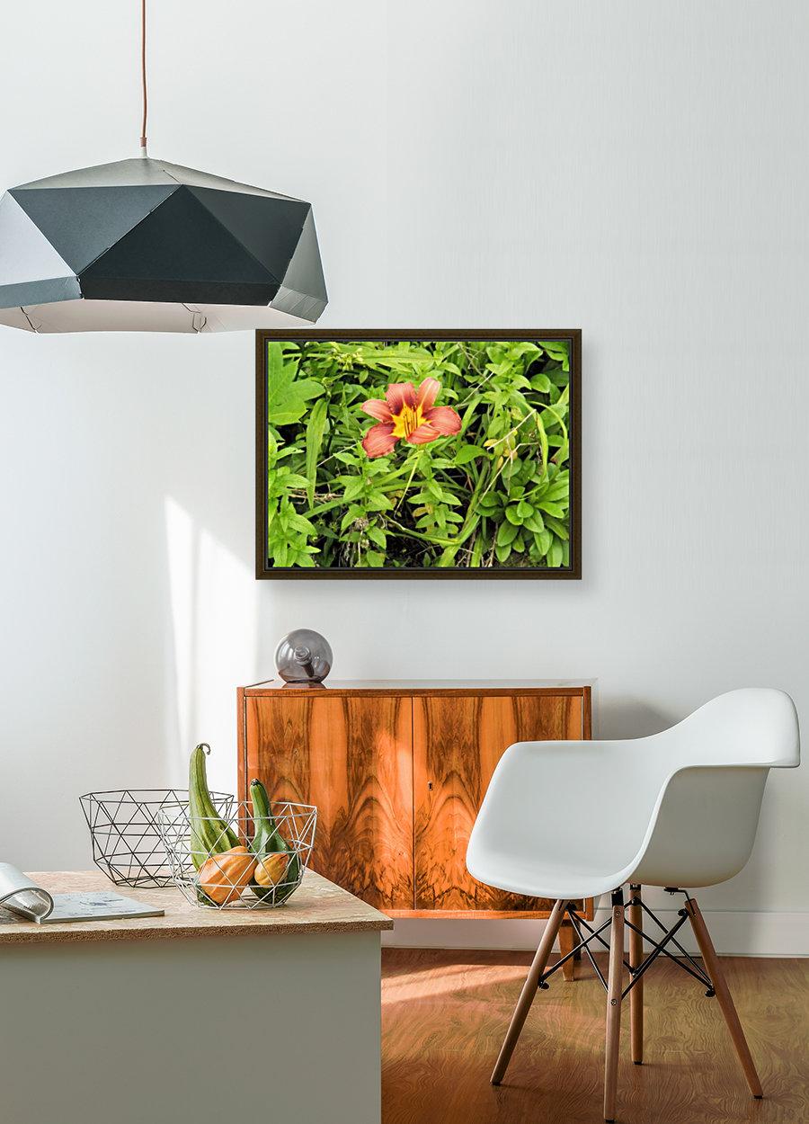 Oranger Lilly 4  Art