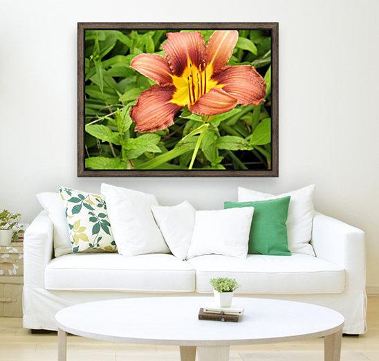 Oranger Lilly 3  Art