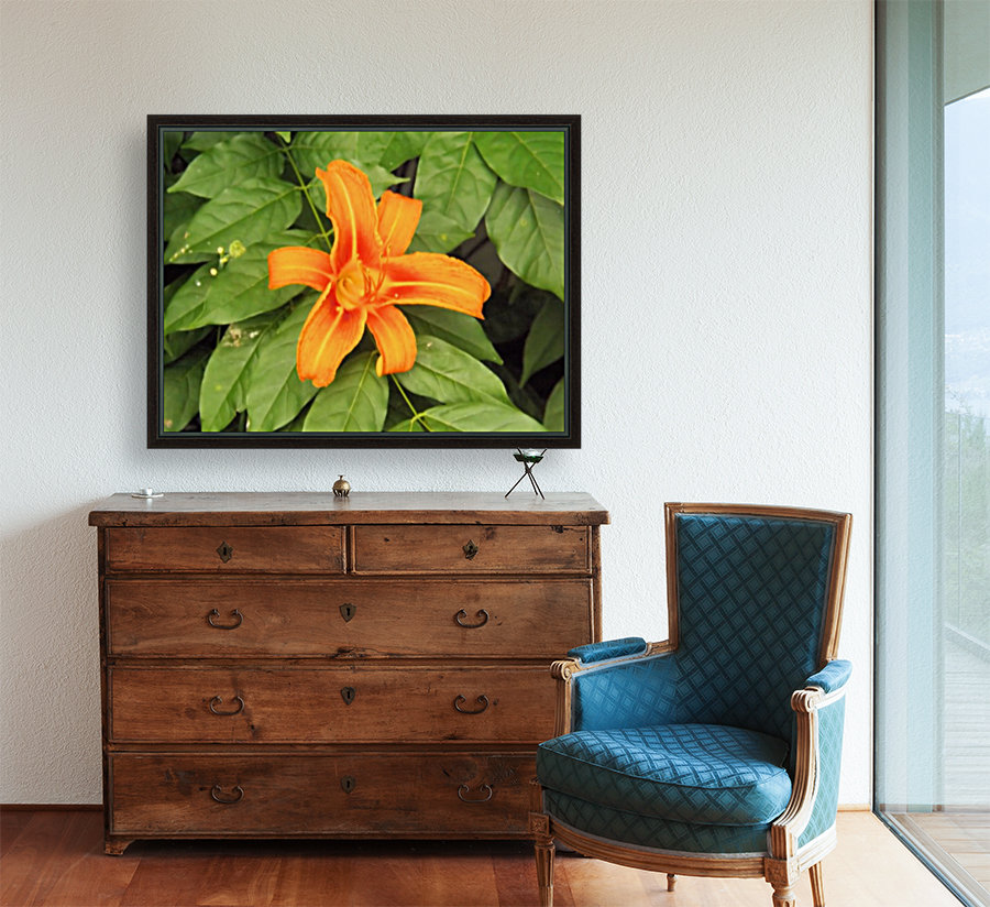 Orange Lilly 1  Art