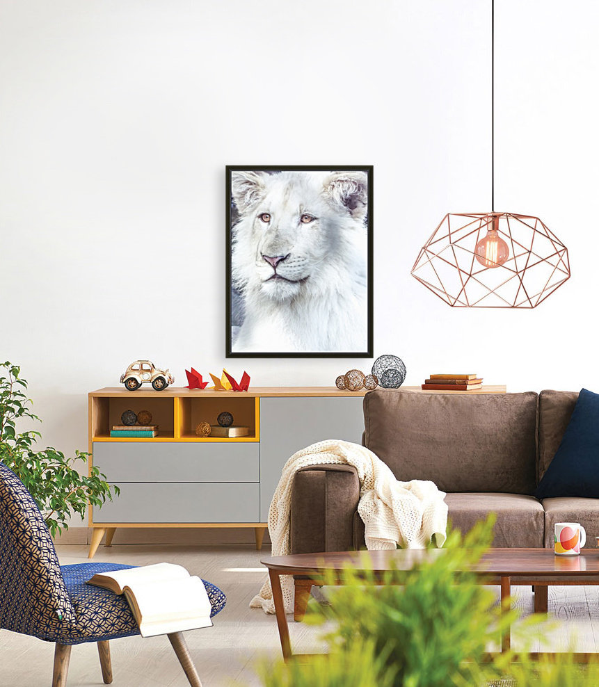 Juvenile White Lion   Art