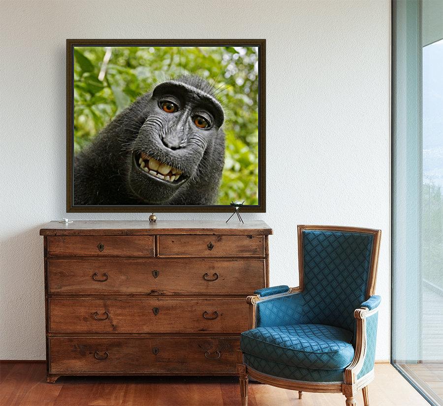 monyet  Art