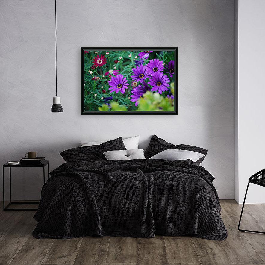 Purple Flowers in Dana Point CA  Art