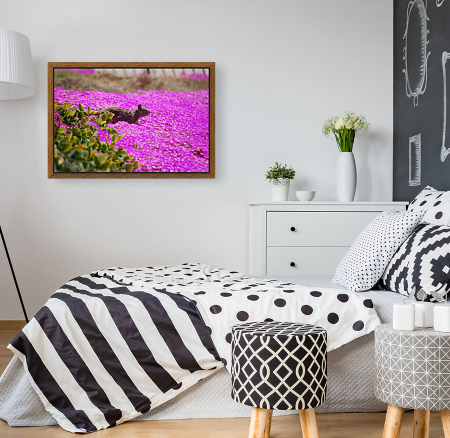Pink Wild Flowers on a Hill With a Squirrel  Art