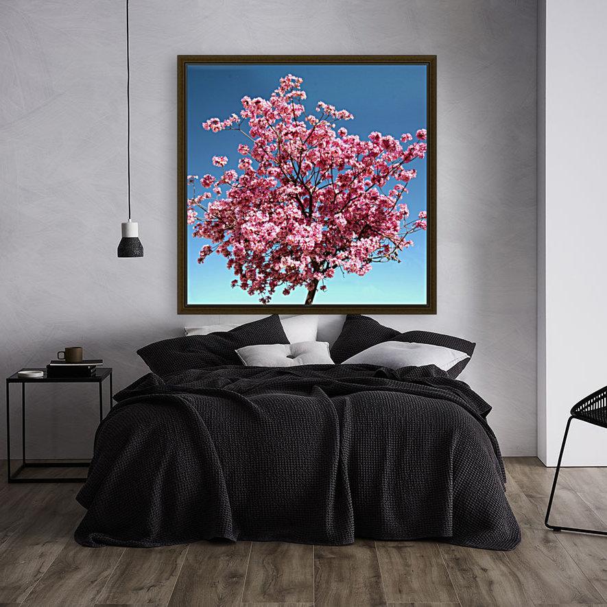 Cherry Blossom on Blue  Art