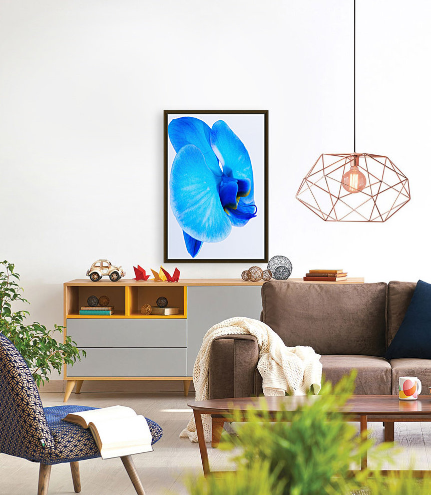 ORCHIDÉE BLEUE with Floating Frame