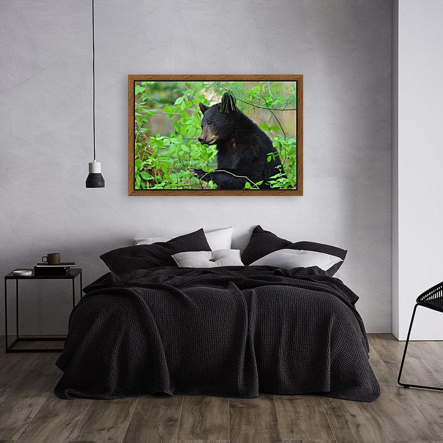 3646-Bear Lunch  Art