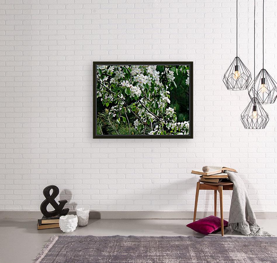 DazzleBlossoms  Art