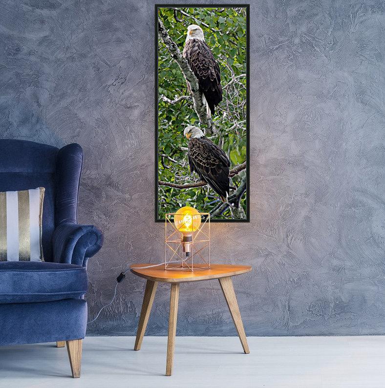 Watchful1  Art