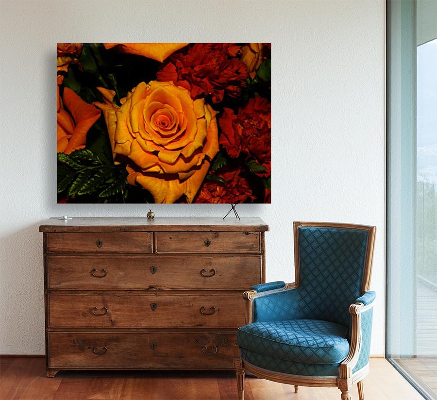 sofn-6411E9A2  Art