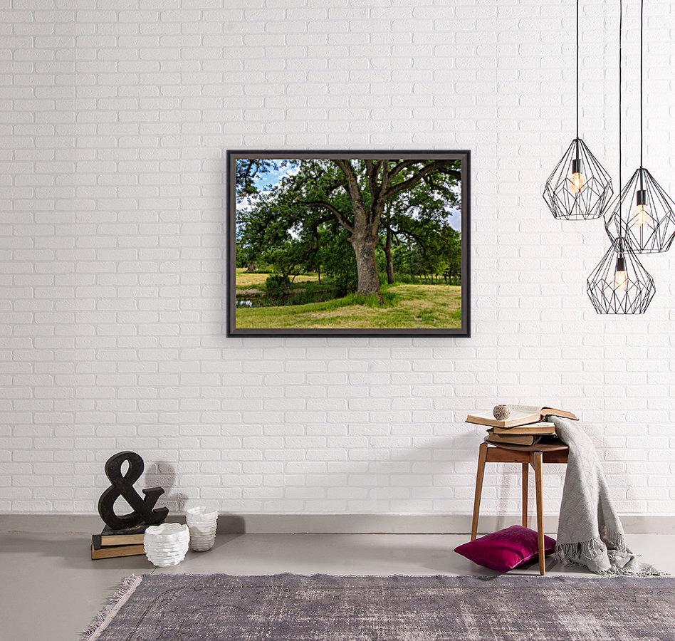 Oak Tree  Art