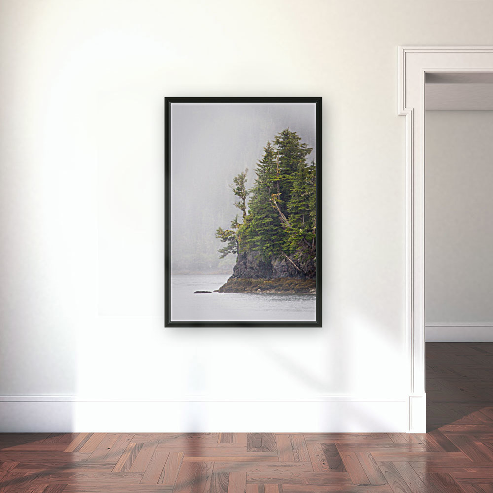 Photos Alaska Mountains  Art
