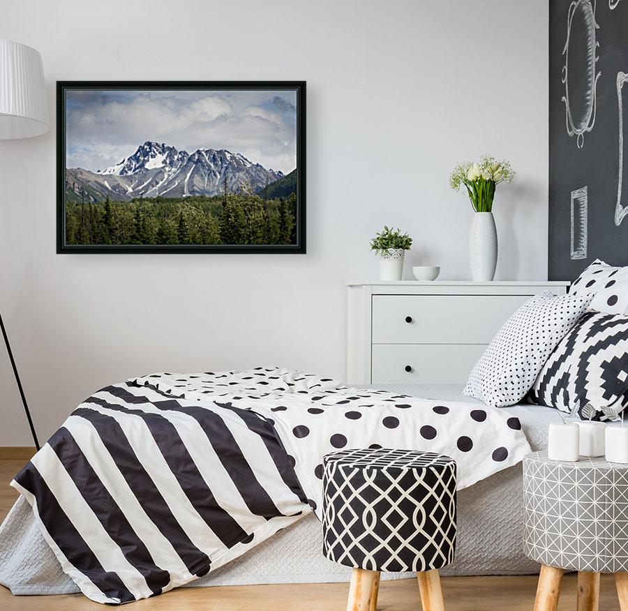 Alaska Mountain Range  Art