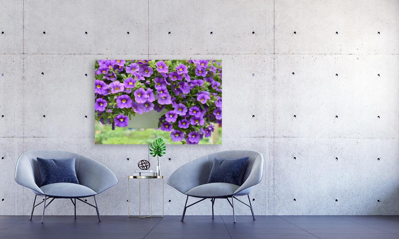 Beautiful Purple Flowers Photograph  Art