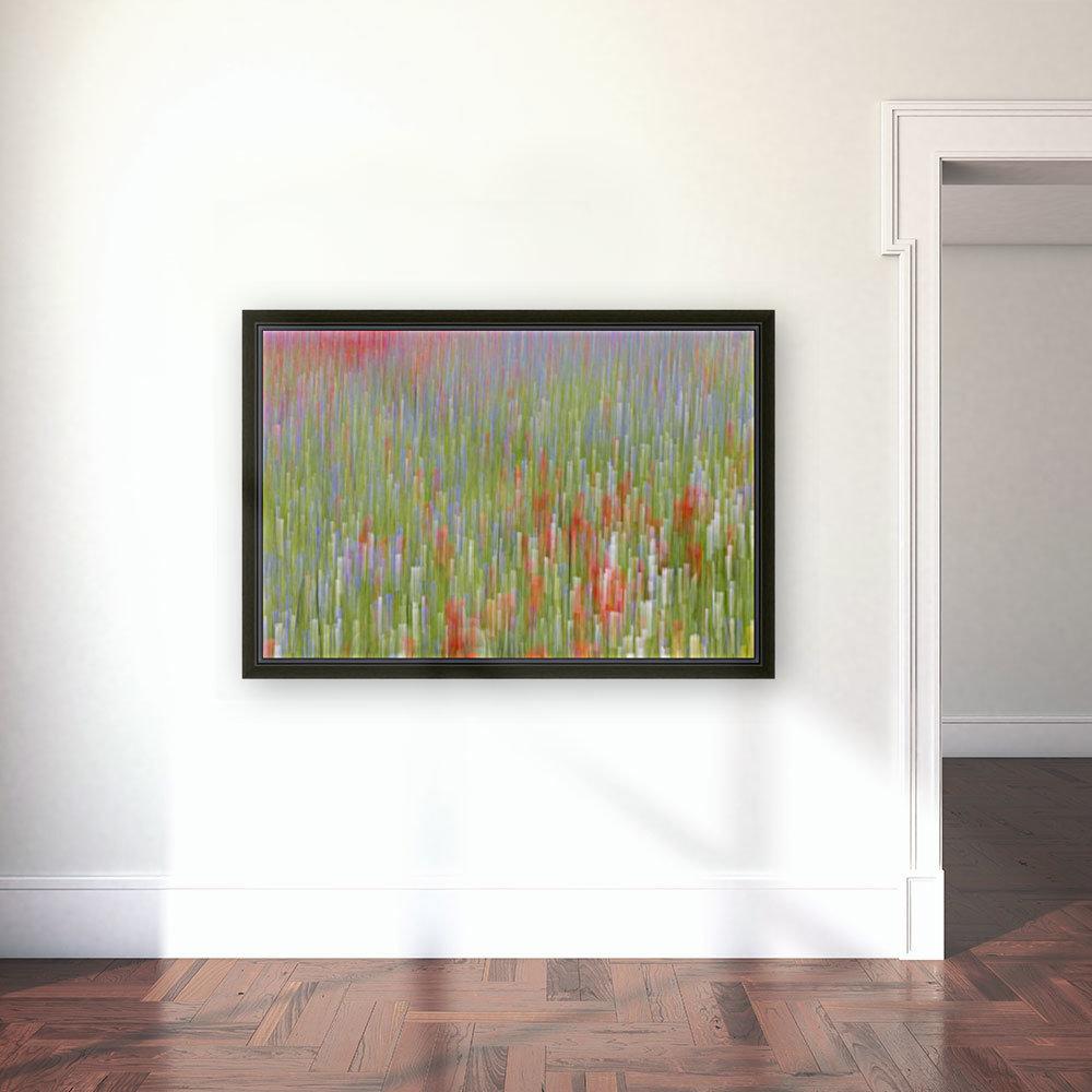 La fioritura di Castelluccio  Art