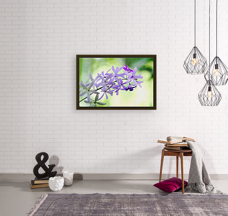 Purple orchid with Floating Frame