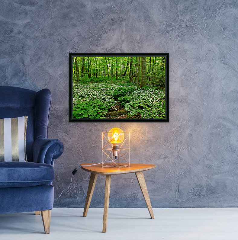 Trillium Woods VI with Floating Frame