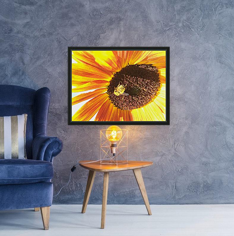 Bumblebee on Sunflower  Art