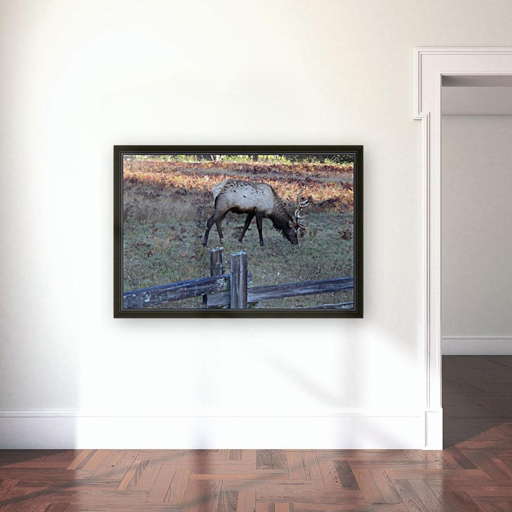 Bowing Elk  Art