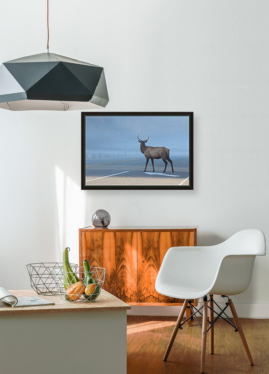 Elk Crossing  Art