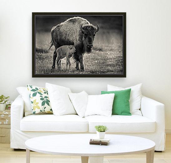 Bison love  Art