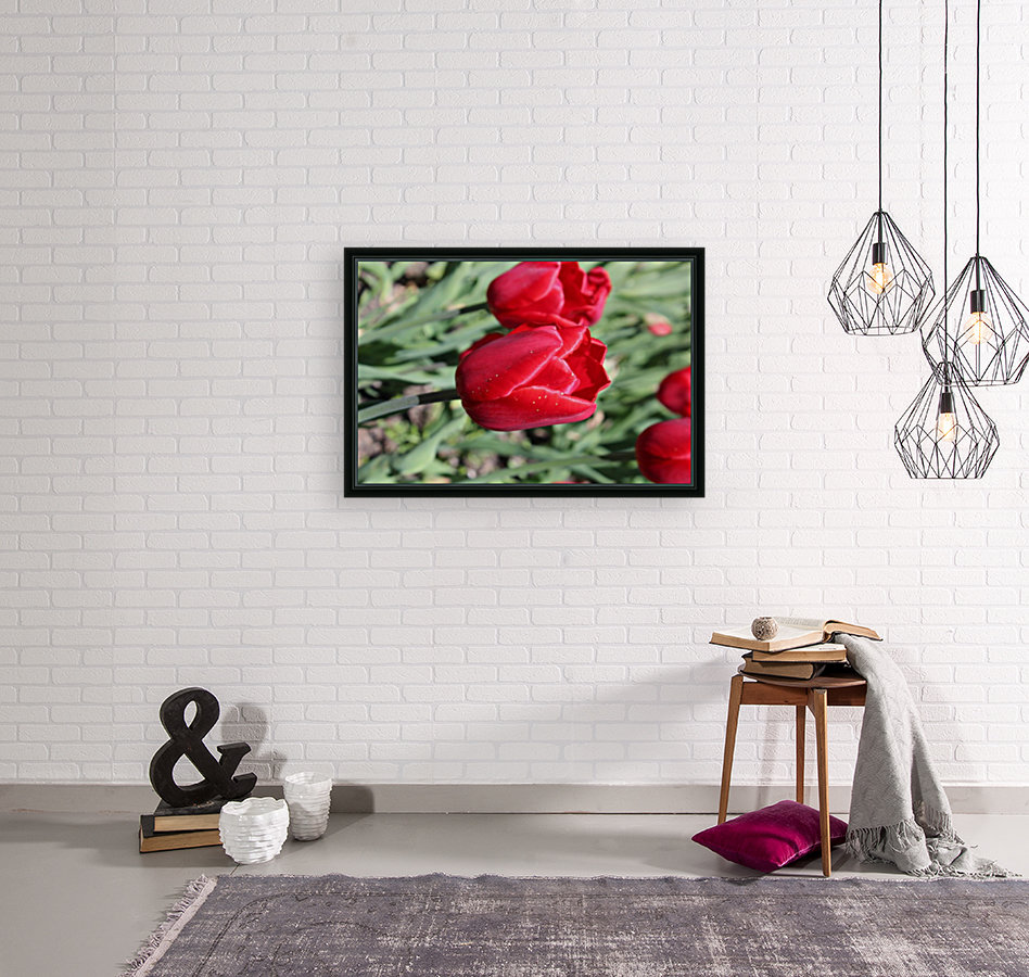 Tulips Red  Art