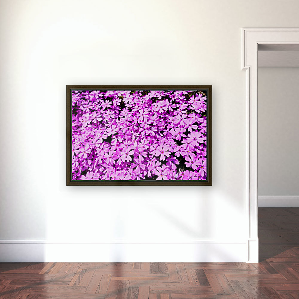 Pink Petals  Art