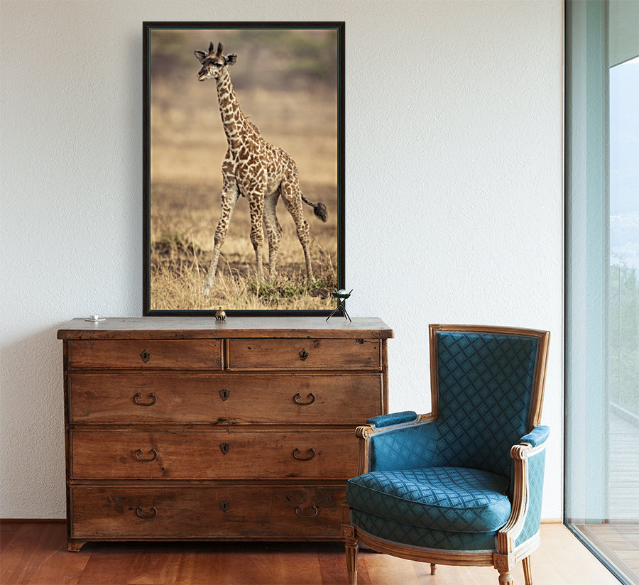 Little Girafe with Floating Frame