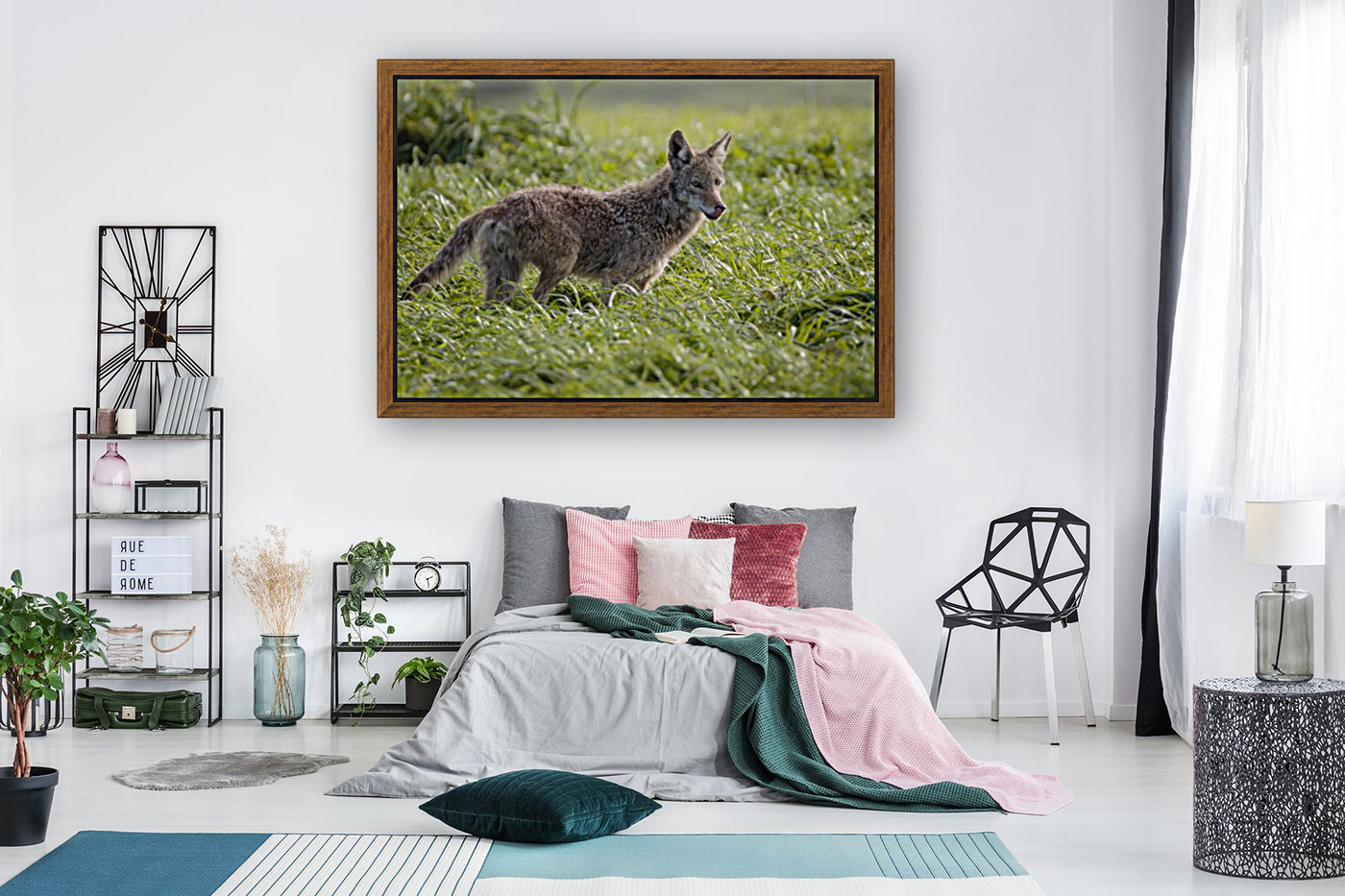 Coyote Pretty  Art