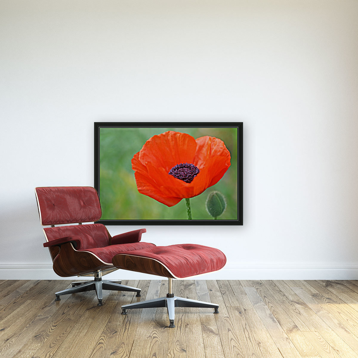 Poppy Red with Floating Frame