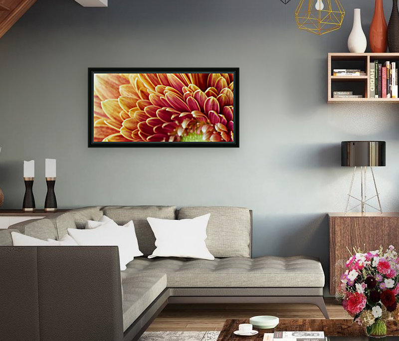 Golden Chrysanthemum  Art