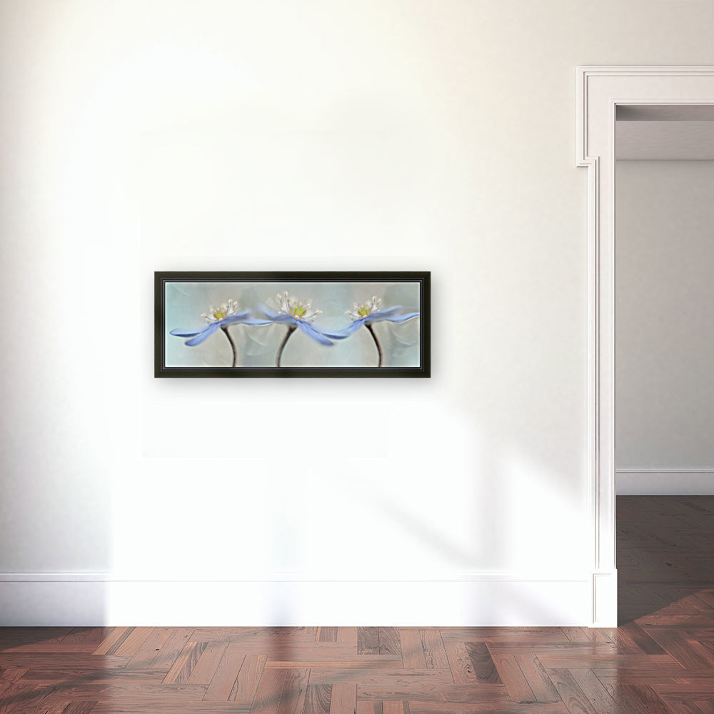 Dancing anemones with Floating Frame
