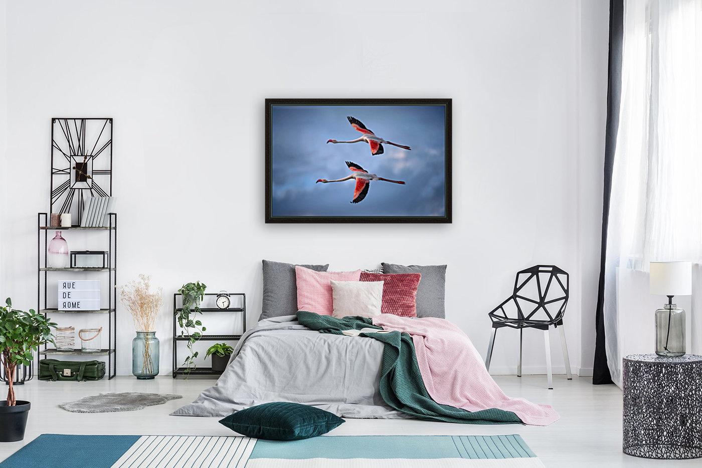 Greater Flamingos  Art