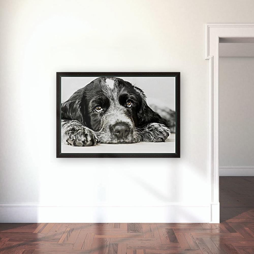 Cute Cocker Spaniel Puppy  Art