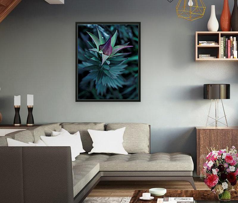 Funky flora  Art