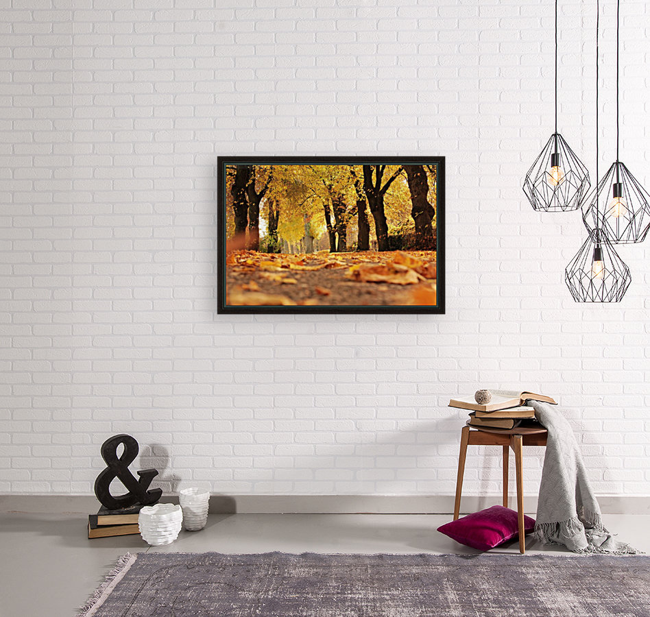 Beautiful Nature Landscape Tree Forest Trees Photography landscape photo Scenery  Art