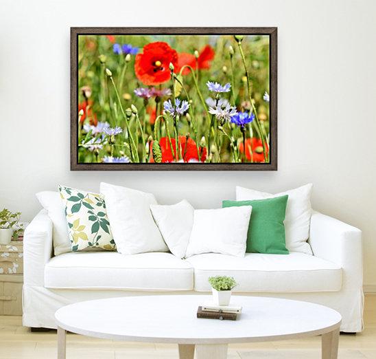 alpine cornflower, cornflowers, flowers, centaurea montana, field of flowers, poppy, composites, flora, wild plant, plant, flower garden, wild flower, garden, flower meadow, petal, meadow, nature,  Art