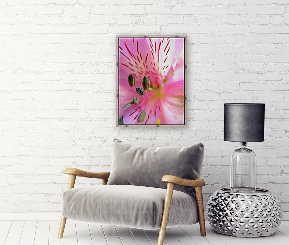 Gentle Pink with Floating Frame