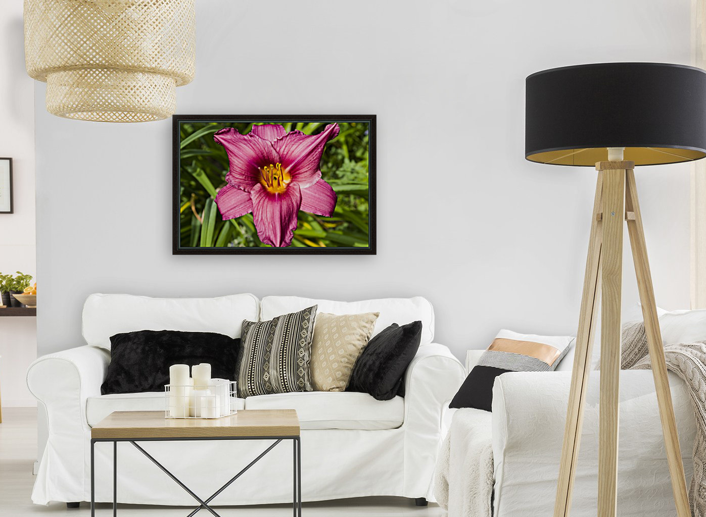 Purple Stella Doro Day Lily Flowers 2 with Floating Frame